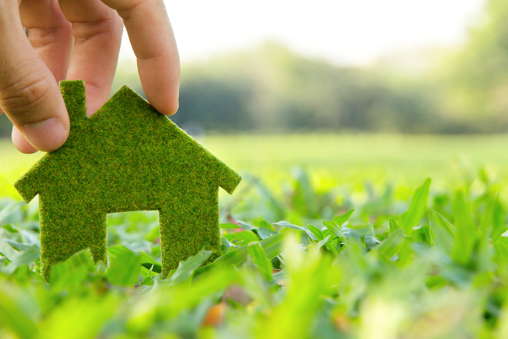 How to turn your home into a environmentally friendly place